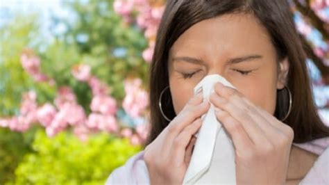 Allergie: cause, sintomi e cure | Saperesalute