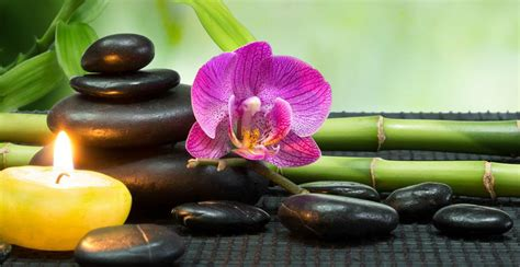 21 Simple Tips To Feng Shui Your Home - Freeastrology123